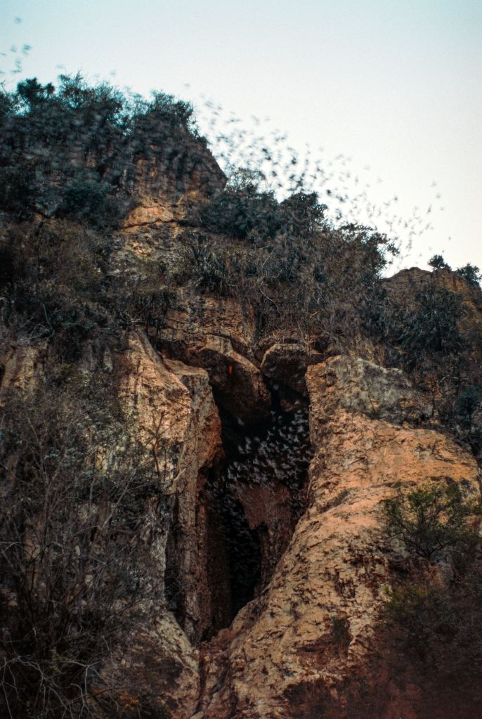 Bat Caves at Phnom Sampou, located near the Killing Caves