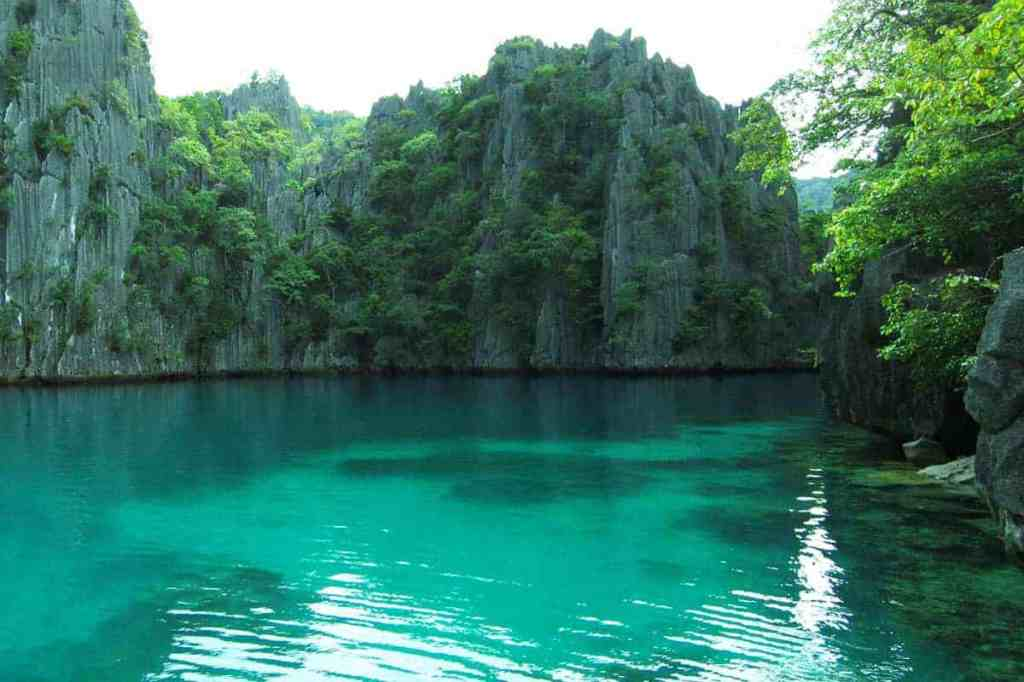 Scuba diving in Coron