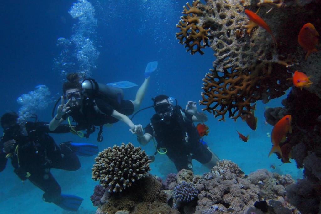 Book a scuba diving trip to Egypt!